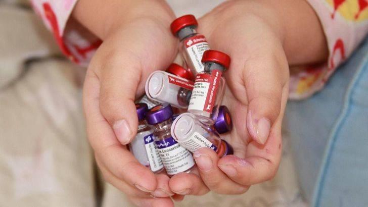XVI Jornada de avances en vacunología