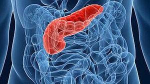 Prevenir el cáncer de páncreas con magnesio