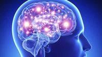 Se prueban tratamientos con vesículas extracelulares para la esclerosis múltiple