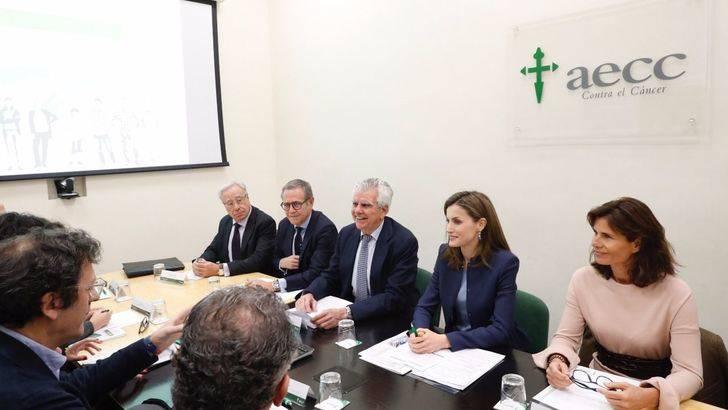 Reunión de trabajo de su Majestad la Reina para analizar los objetivos estratégicos y la actividades de la AECC en 2017