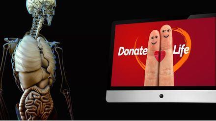 España revalida su liderazgo mundial en donación de órganos y aporta el 20% de la UE y el 6% del mundo