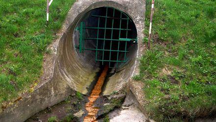 A través de las tuberías podría propagarse el Coronavirus