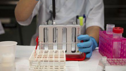 Obtienen moléculas capaces de bloquear la actividad del SARS-CoV-2