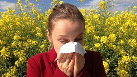 Cómo sobrellevar esta primavera la alergia al polen