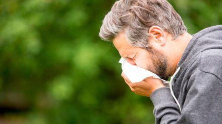 Consejos para prevenir los síntomas de la alergia al polen
